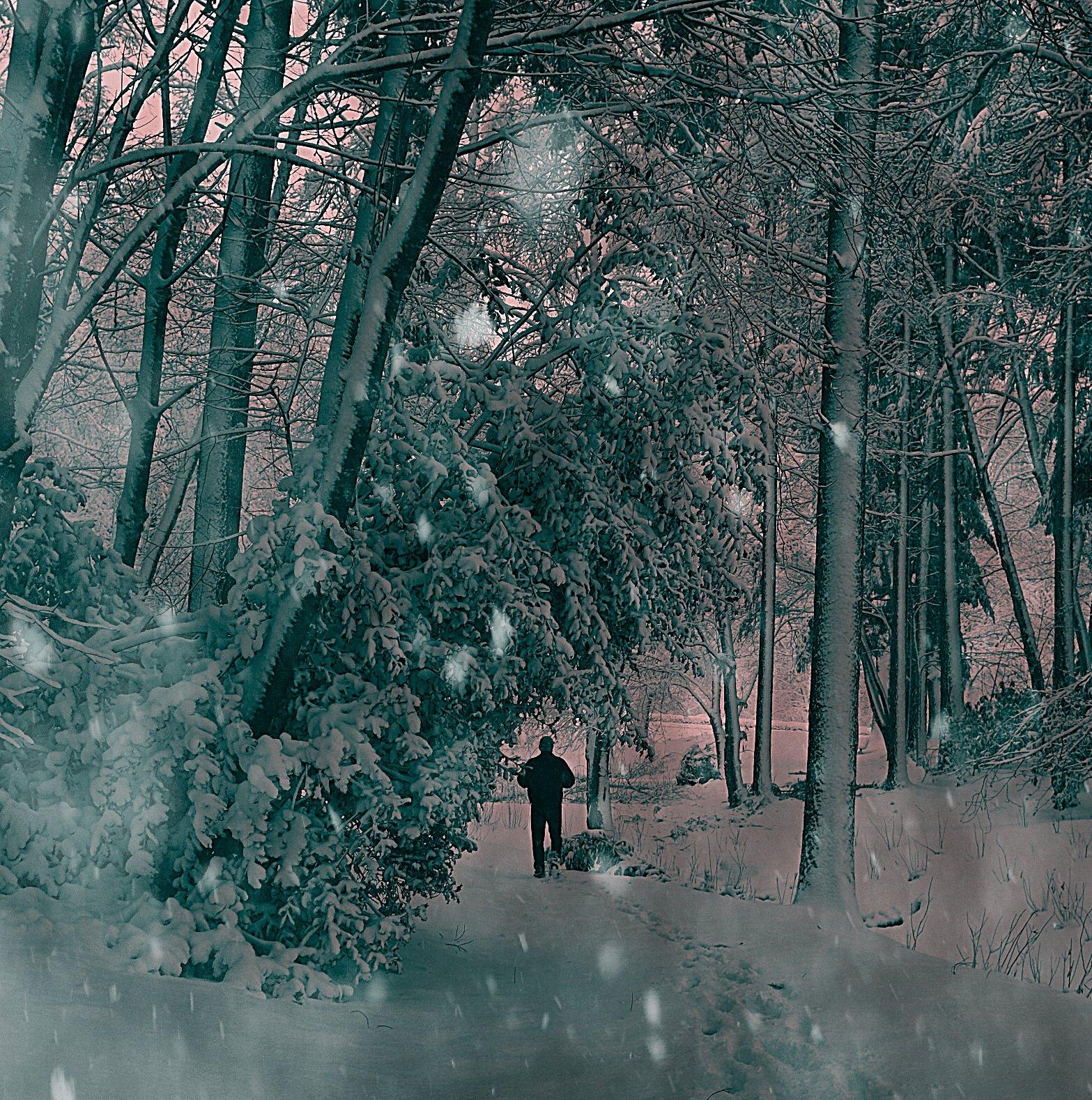 Winter Wonderland: Snowed In in Portland, Oregon