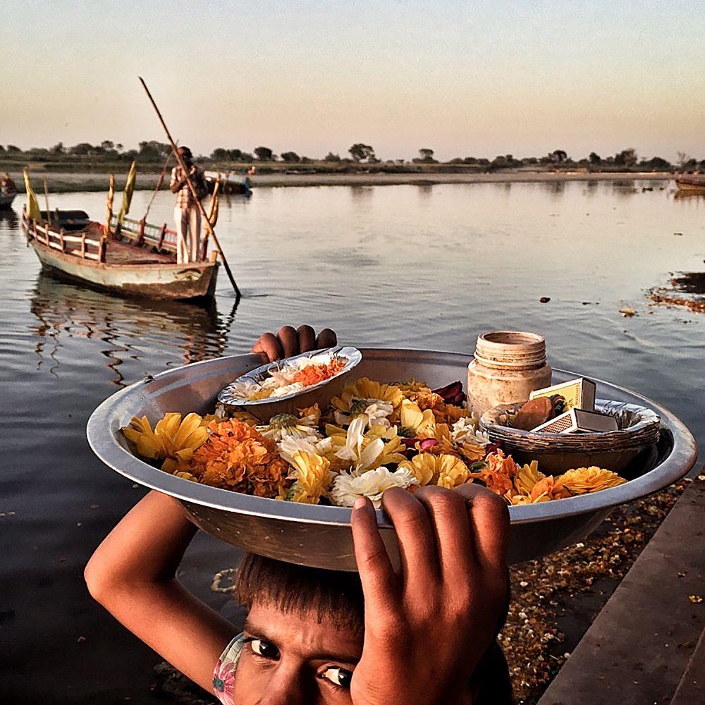 Capture of the Day: Majid Saeedi