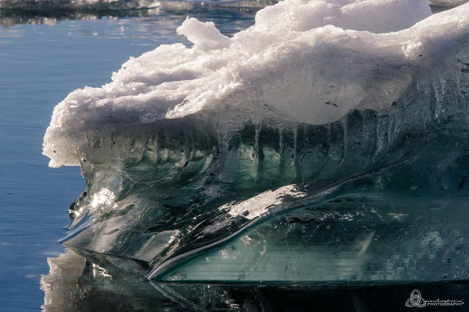 gianluca ice